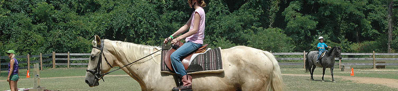 Work as a Horse Riding Instructor at Summer Camp in America